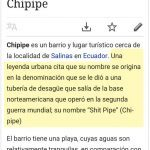 Chipipe no es Shit Pipe