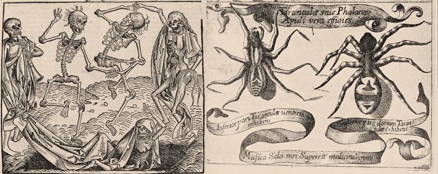 {focus_keyword} La plaga del baile de 1518, el flautista de Hamelin y las tarántulas tarantula 1