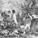 La milagrosa cura contra el paludismo que se convirtió en gin-tonic